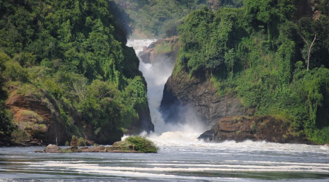 Animal- and Waterfall-Spotting in Murchison Falls National Park